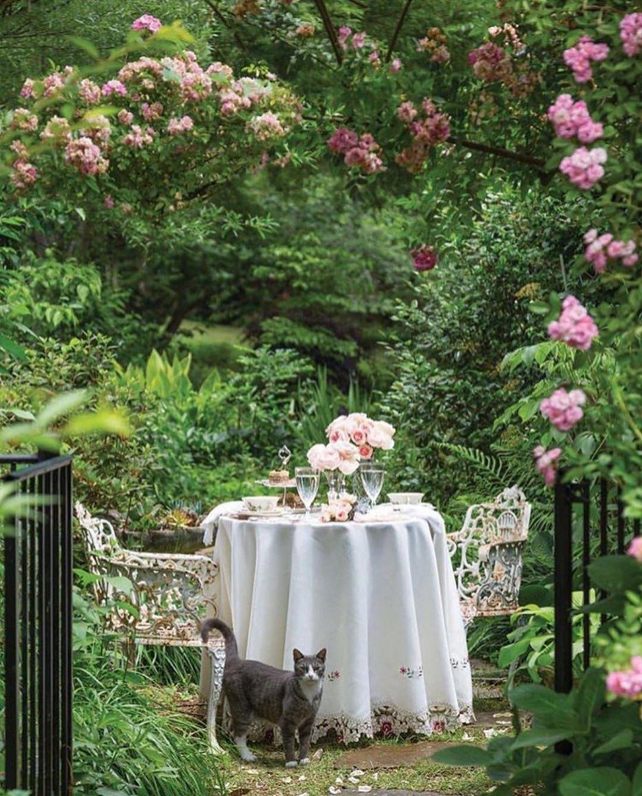 Pin Von Hedonist Auf Horticultural Art In 2020 Garten Garten Ideen Schonheit