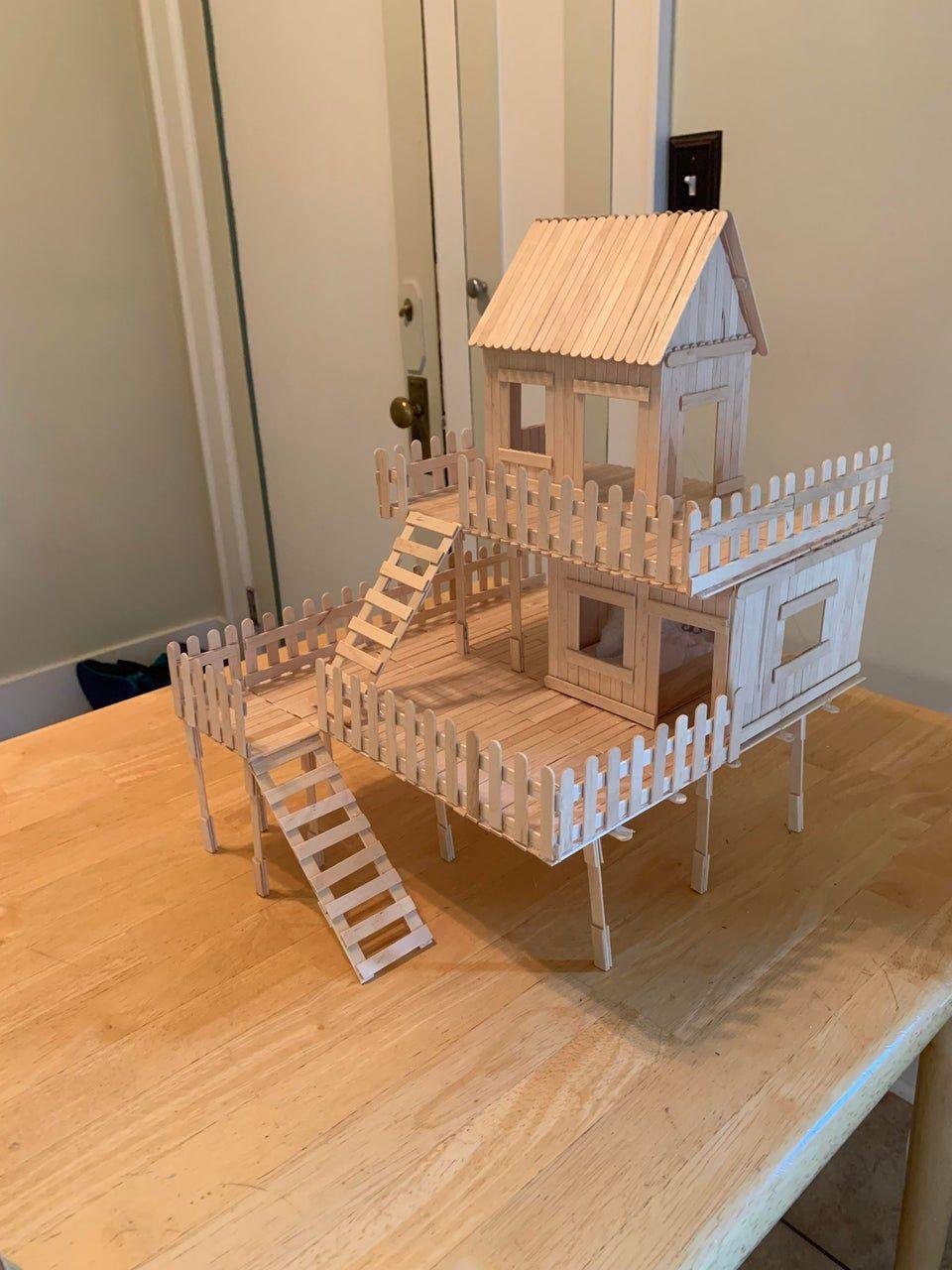 Reddit hamsters DIY popsicle stick house I just finished building