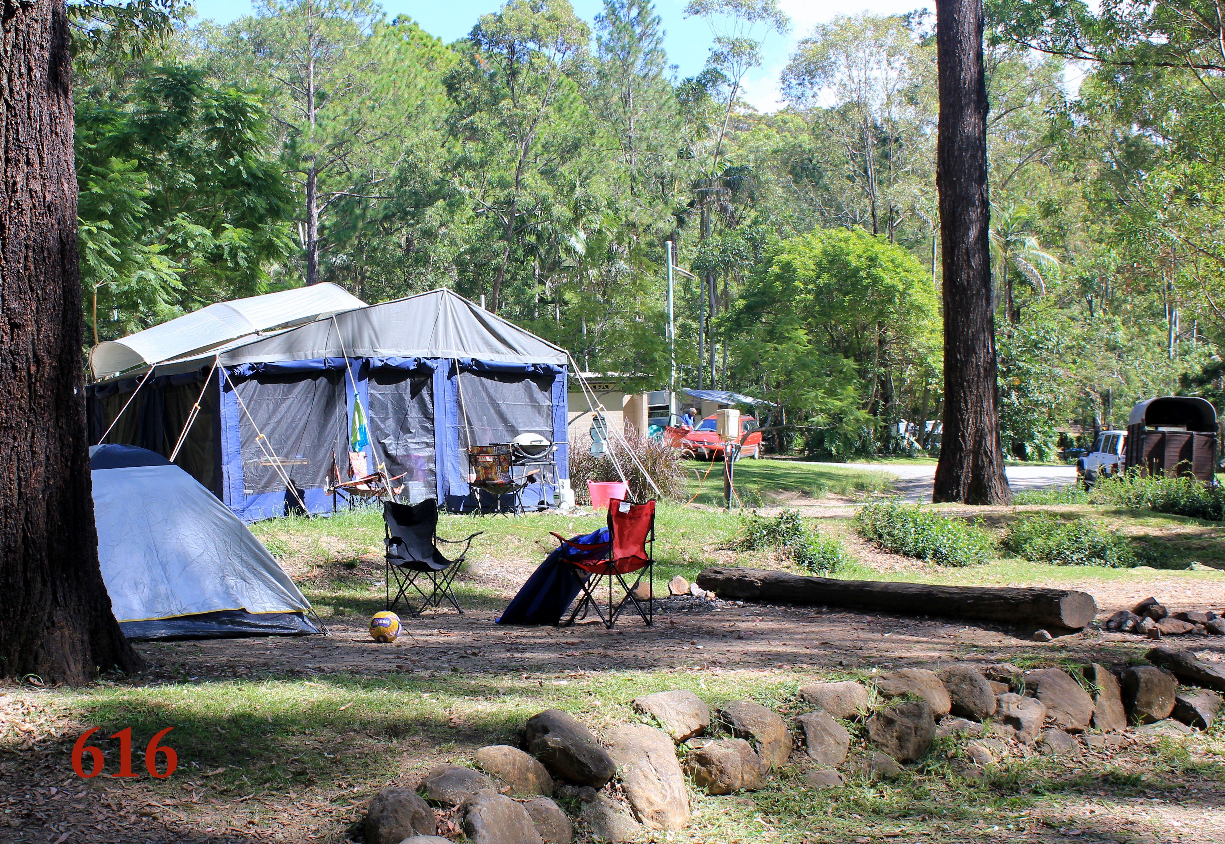 Camping, Thunderbird Park, Mount Tamborine   Caravan ...