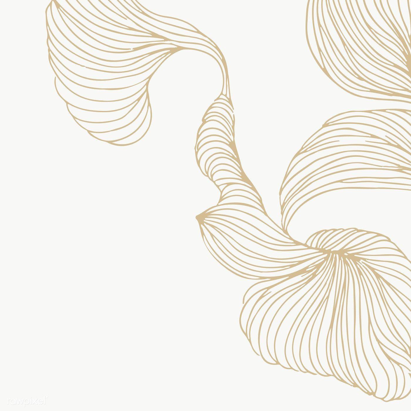 Beige Swirly Line Frame Design Transparent Png Premium Image By Rawpixel Com Adj Frame Design Line Art Flowers Abstract Lines