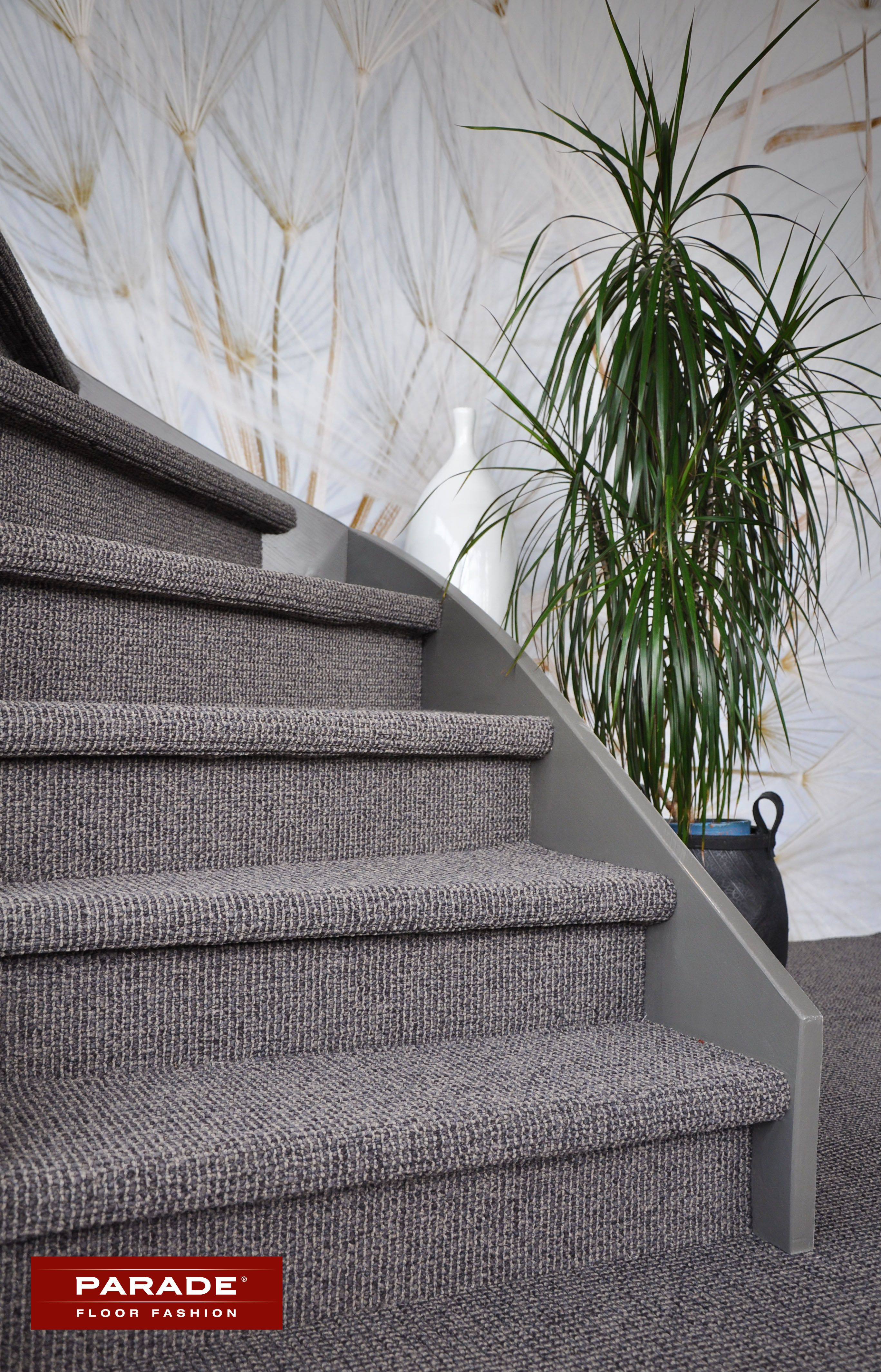 trap bekleed met tapijt van parade in de kwaliteit studio