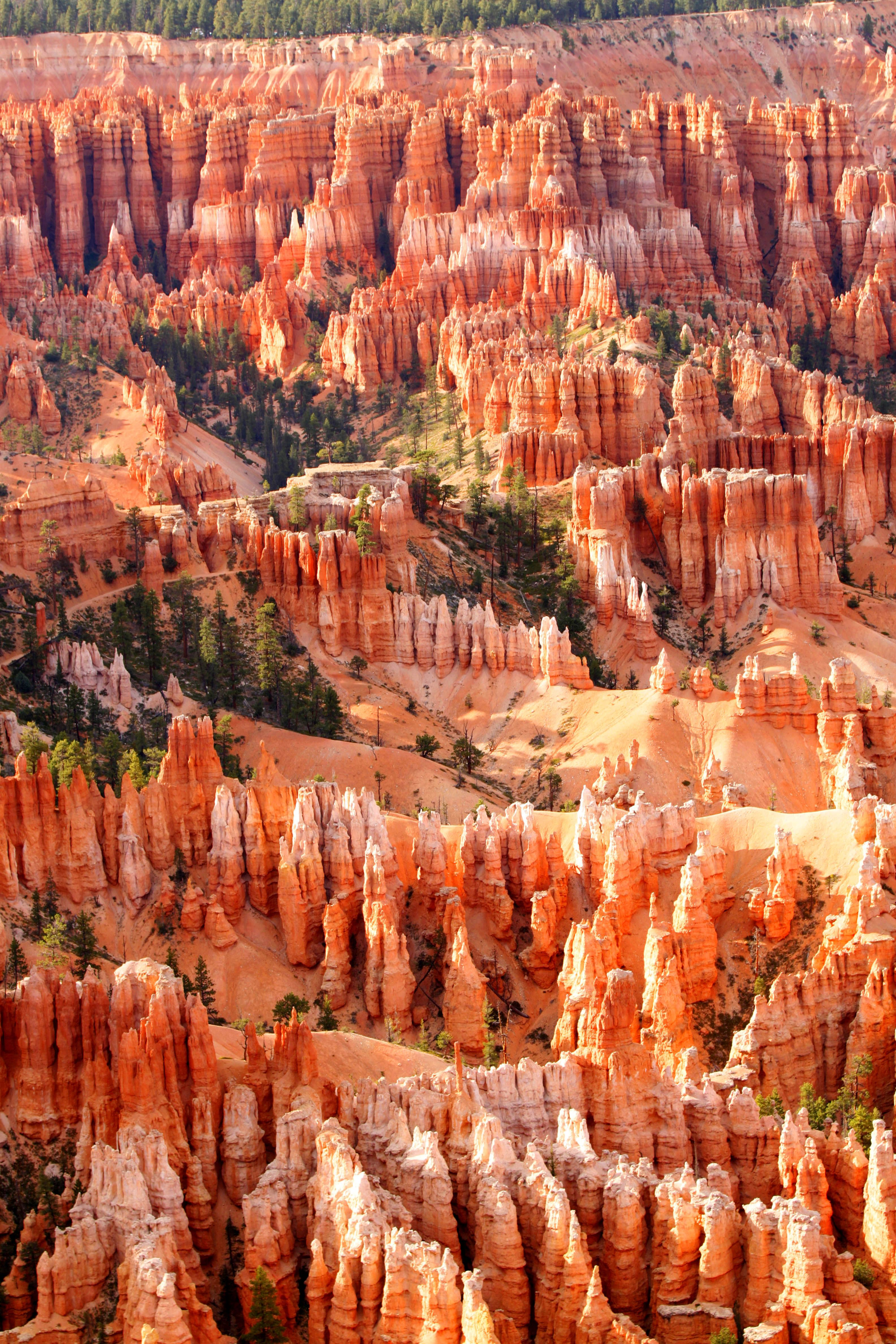 Bryce Canyon, Utah  I love this place, its so colorful & the rock formations are CRAZY! I just love Utah & Arizona, they have so many red rocks & canyons....