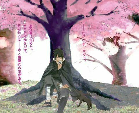 Sasuke Shinden Sasuke Sasuke Uchiha Sasusaku