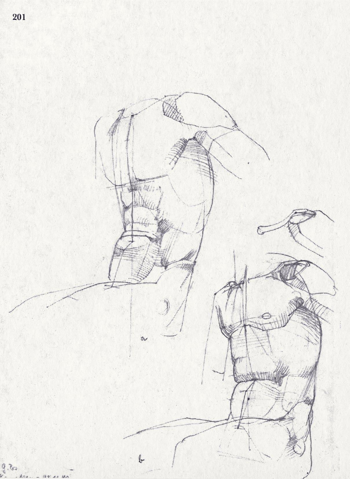 Anatomy - Bammes - Sehen und Verstehen   anatomy   Pinterest   Sehen