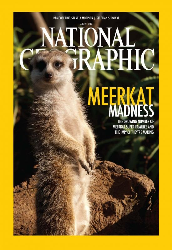 nat geo magazine cover with a meerkat feature  does it