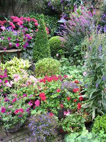 Madelief: My parents garden