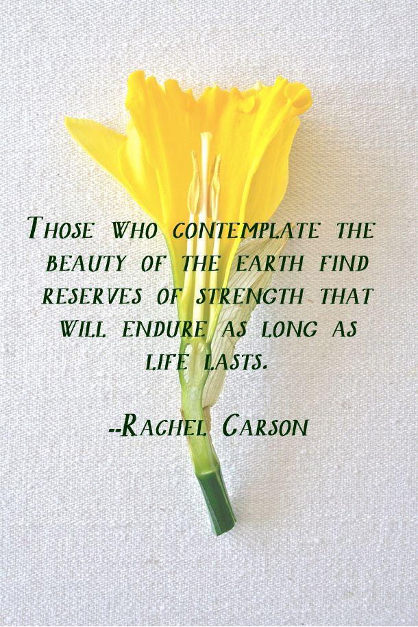 #RachelCarson