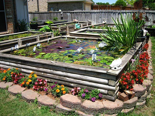 Don 39 t want to dig go above ground backyard pinterest for Above ground koi fish pond