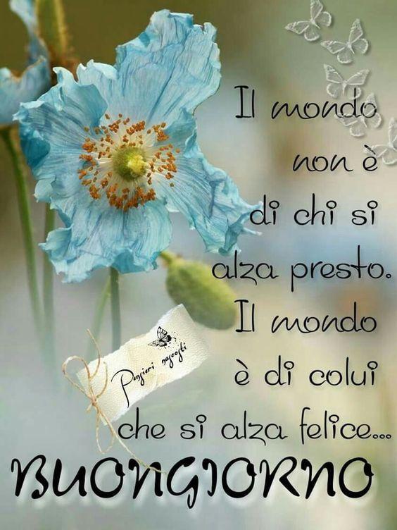 Preferenza Il mio Buongiorno Come l'astro del mattino mi dà il buongiorno  VL13