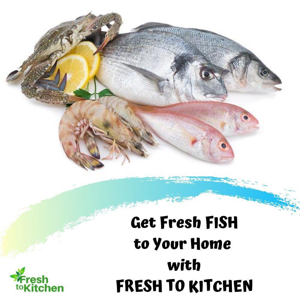 Pin On Buy Fresh Fish Online
