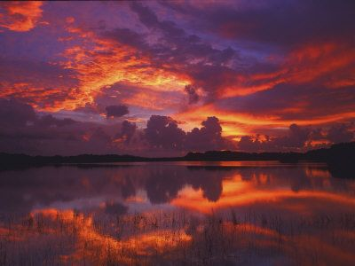 Dawn at Nine Mile Pond, Everglades National Park, Florida, USA