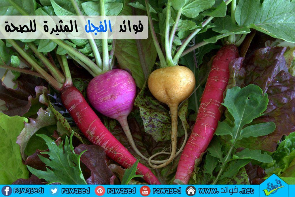 فوائد البصل 14 فائدة مدهشة للبصل وماء وعصير البصل والبصل الاخضر Stuffed Peppers Radishes Greens