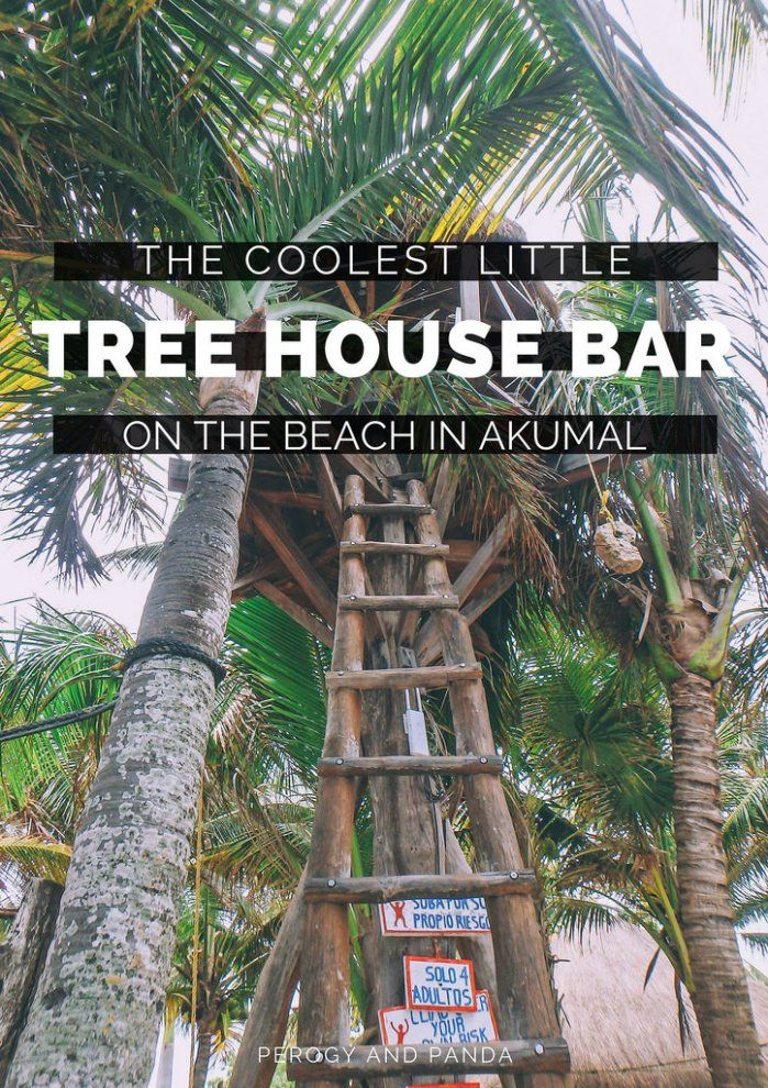 The Coolest Tree House Bar On The Beach In Akumal | Tulum ...