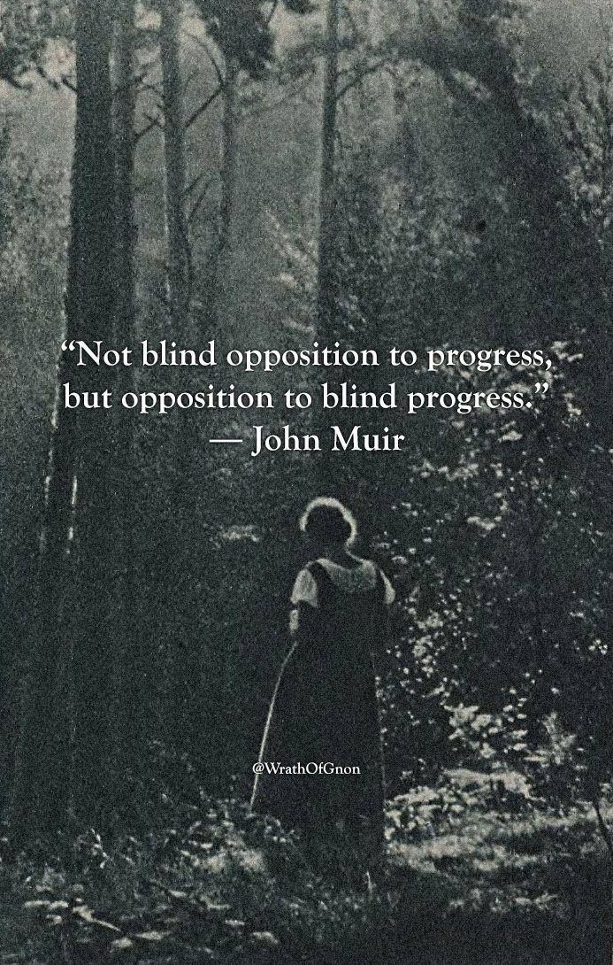 Not Blind Opposition To Progress But Opposition To Blind Progress
