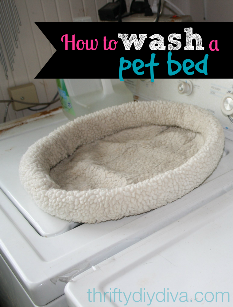 How To Wash And Clean A Pet Bed Pet bed, Dog smells, Pet