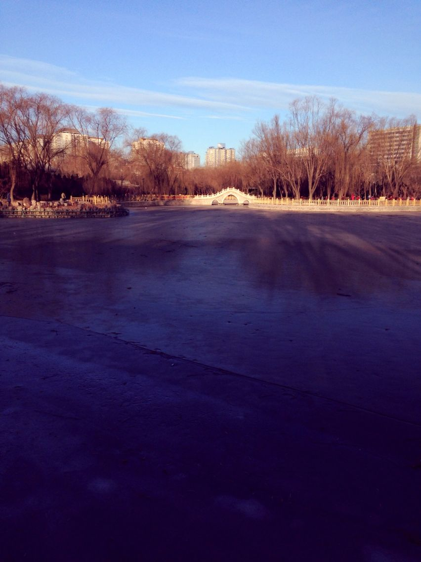 Walking from subway to our office. The lake was frozen.