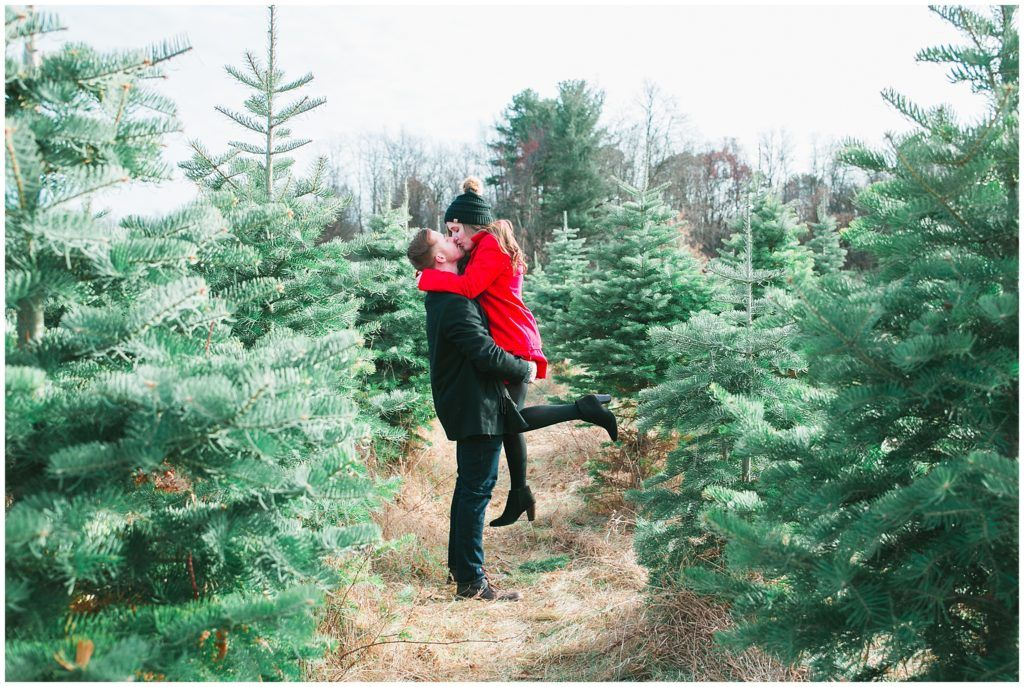 Christmas Tree Farm Engagement Photos Farm Engagement Photos Michigan Wedding Photographer Christmas Tree Farm