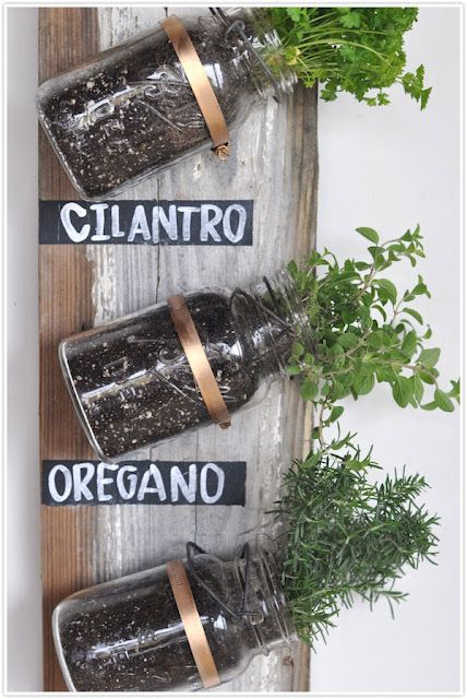 DIY Mason Jar Herb Garden  I Should Do This But Instead Of Hanging The Jars  Like This I Can Put Them In The Built In Wall Spice Rack In Our Kitchen!