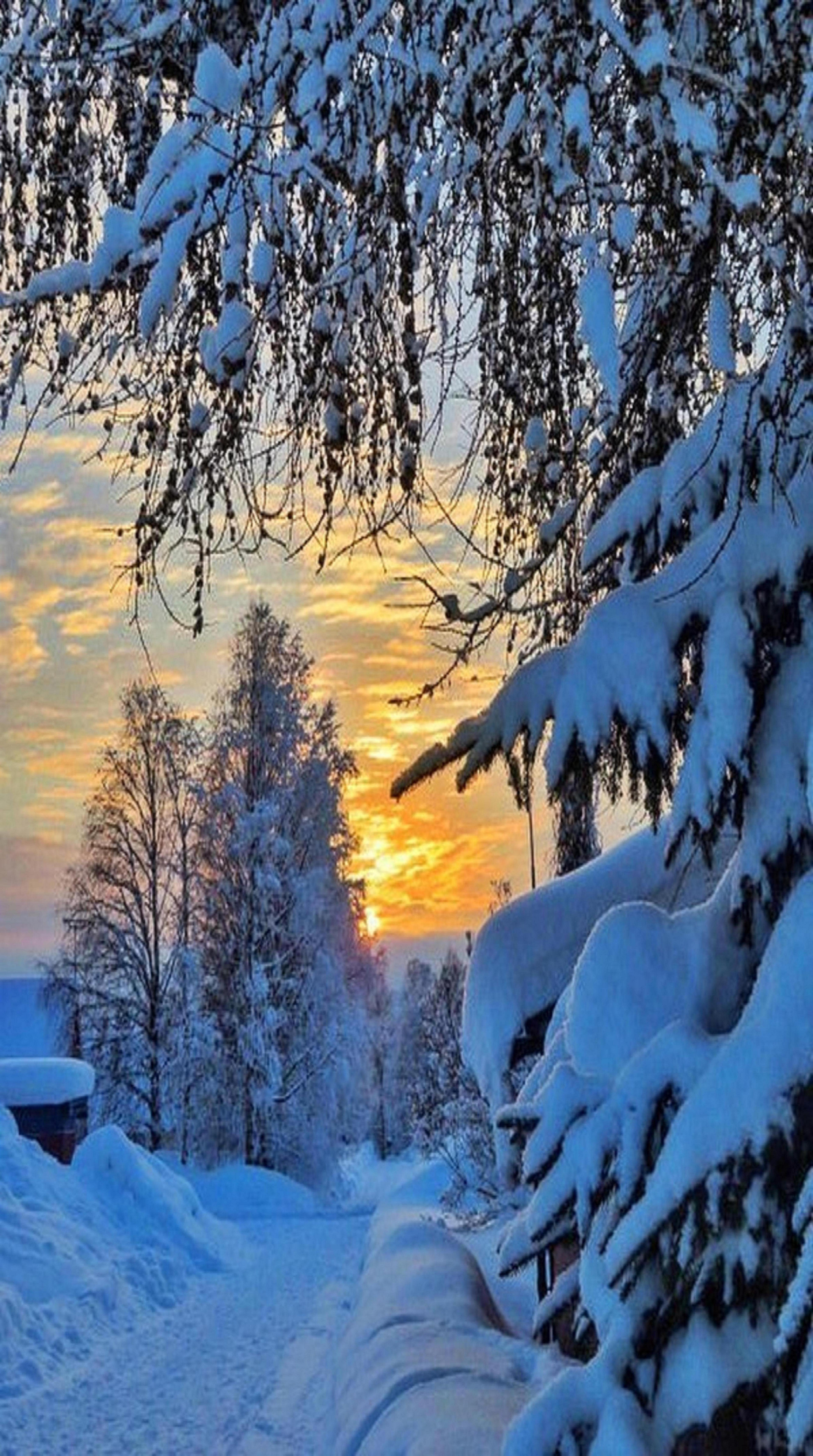 Photo of Sweden