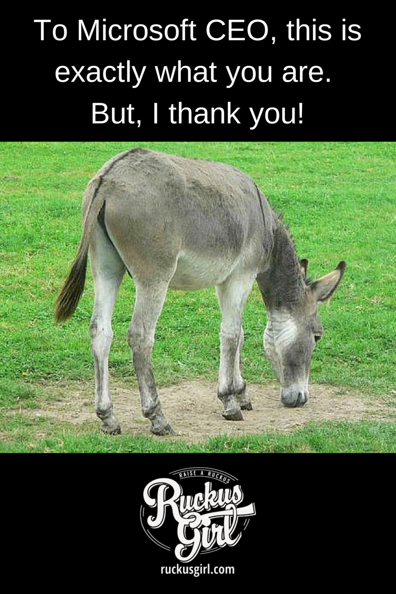 """Microsoft CEO Satya Nadella Sexist Karma Remark. If karma is indeed the """"superpower"""" that Microsoft CEO Satya Nadella believes that it is, he should be wary of his own fate. Read on... http://www.ruckusgirl.com/microsoft-ceo-satya-nadella-sexist-karma-remark/ Donkey picture source: http://www.publicdomainpictures.net/view-image.php?picture=donkey&image=1417&large=1"""