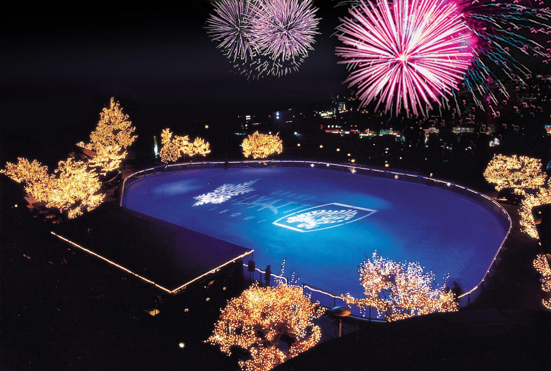 Картинки по запросу Grand hyatt seoul new year