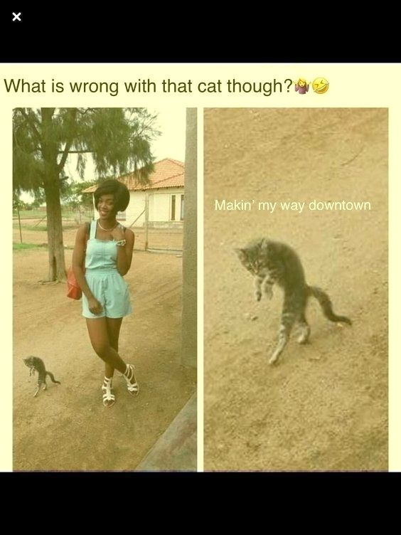 Check Out These 25 Hilarious Photos That Will Make