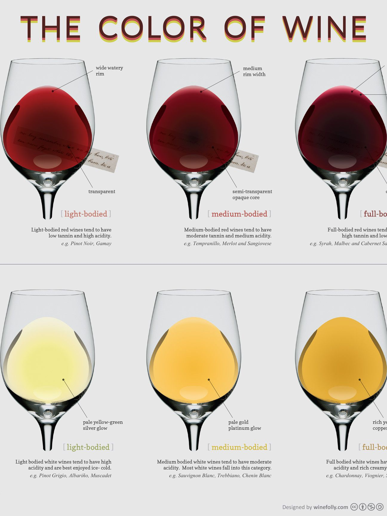 13 X 19 Poster Compare The Different Colors Of Wine With