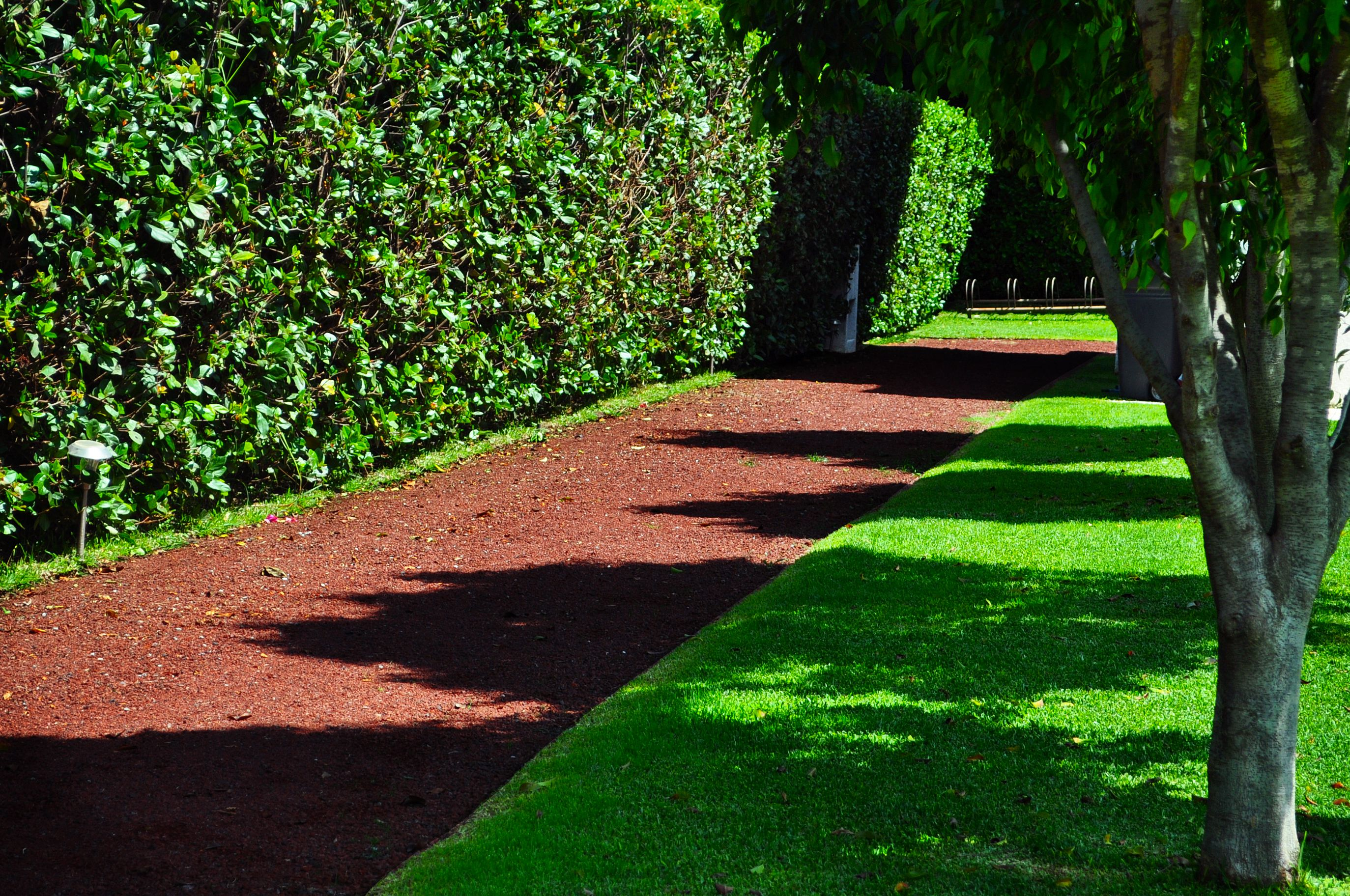 Tezontle camino para jardines le da color al espacio for Camino de piedra jardin