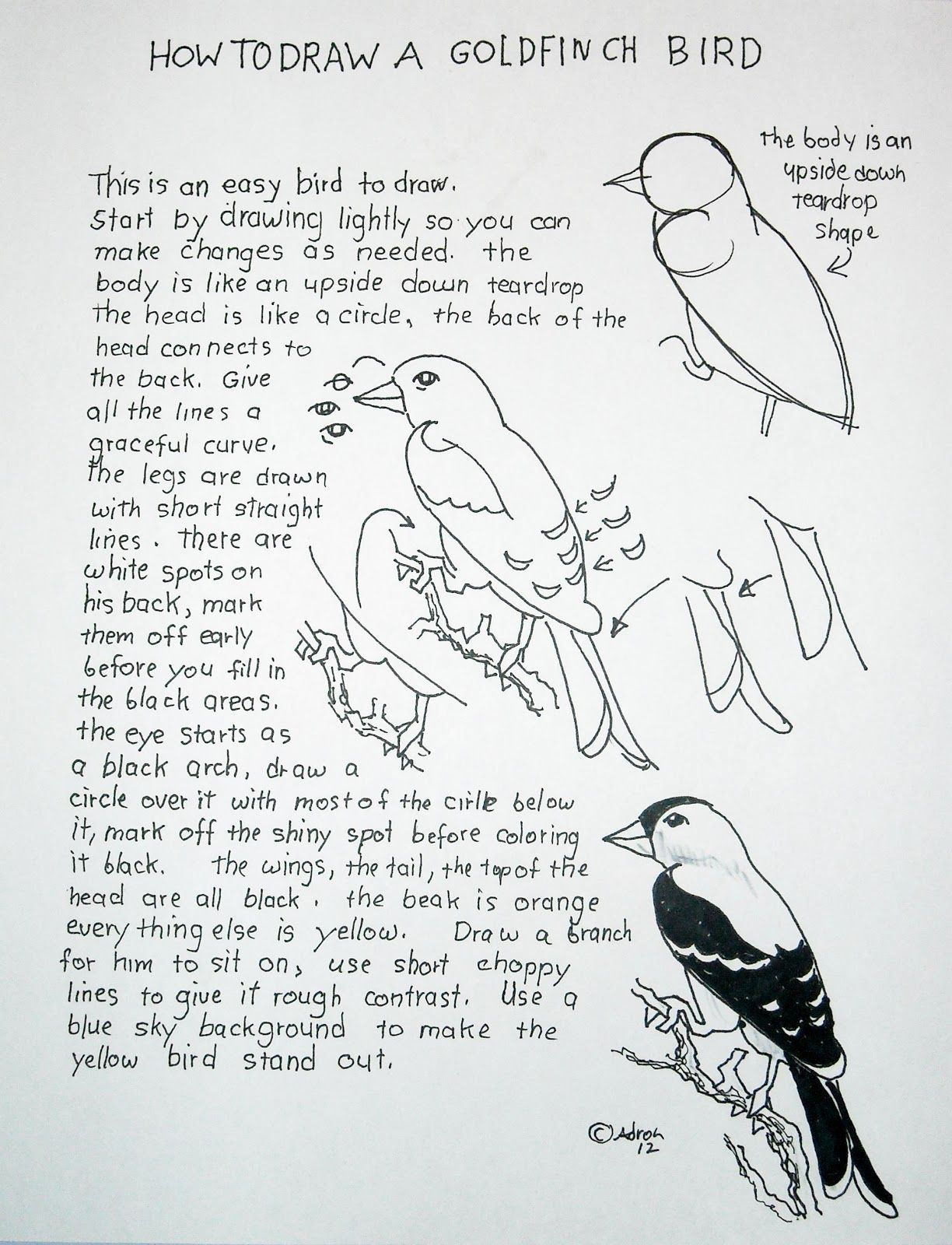 How To Draw A Bird Easy Lesson And Worksheet