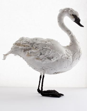 Abigail Brown`s Swan