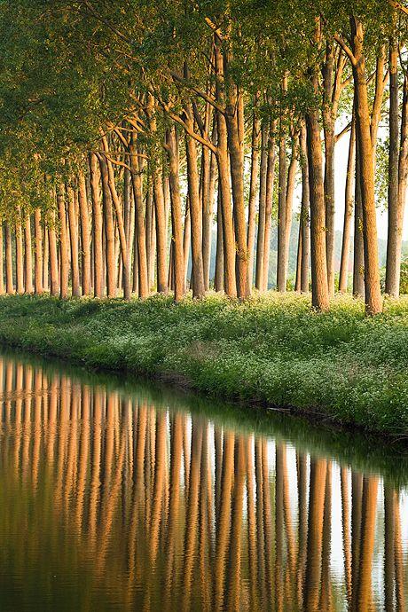 ✯ Damse Vaart at sunrise - Damme, Belgium Mehr