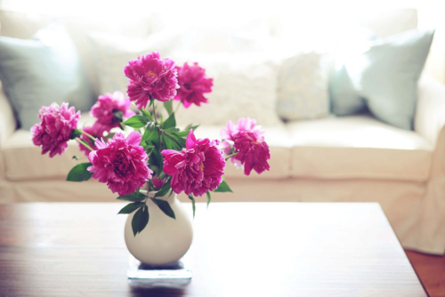 #interior #flowers