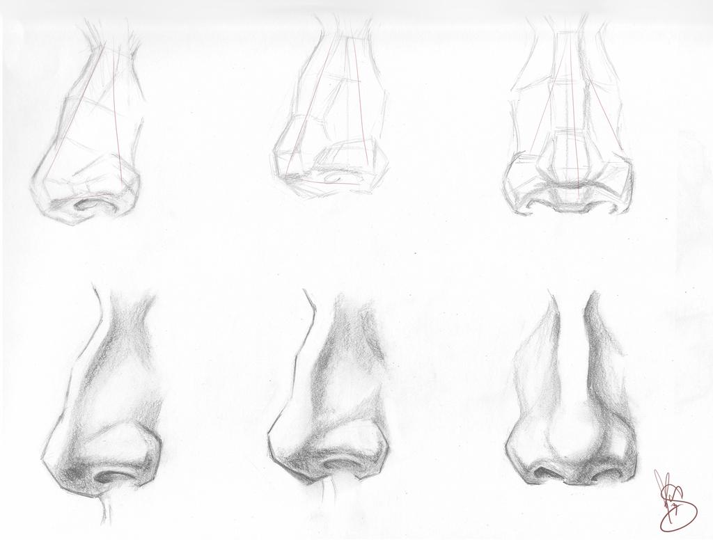 Носы с разных ракурсов рисунки вчера болельщики