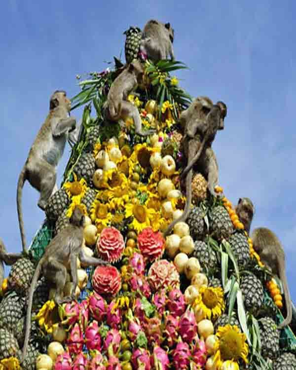 Image result for thailand monkey buffet festival
