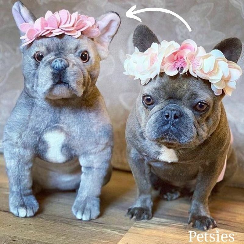 See Custom Pet Plushies From Petsies Custom Stuffed Animal Animals Your Pet