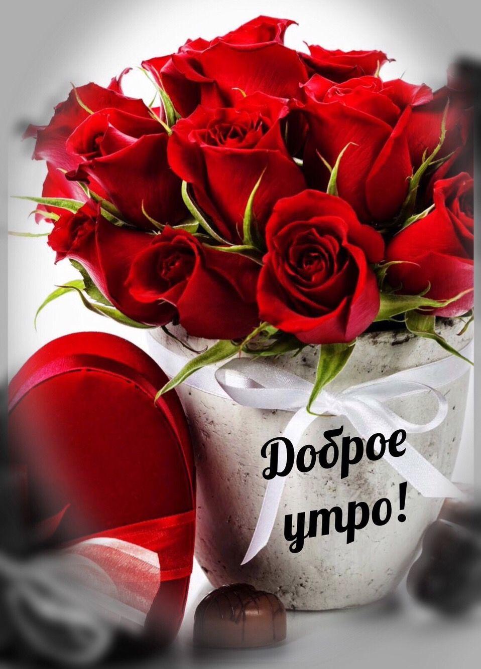 Днем рождения, красивая открытка с розами с добрым утром