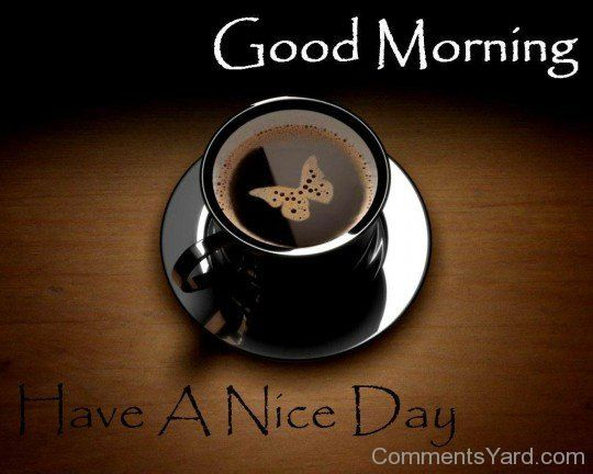 Have A Nice Day Good Morning With Black Cup Of Coffee HD WallpaperHave WallpaperGood Friends Wallpaper