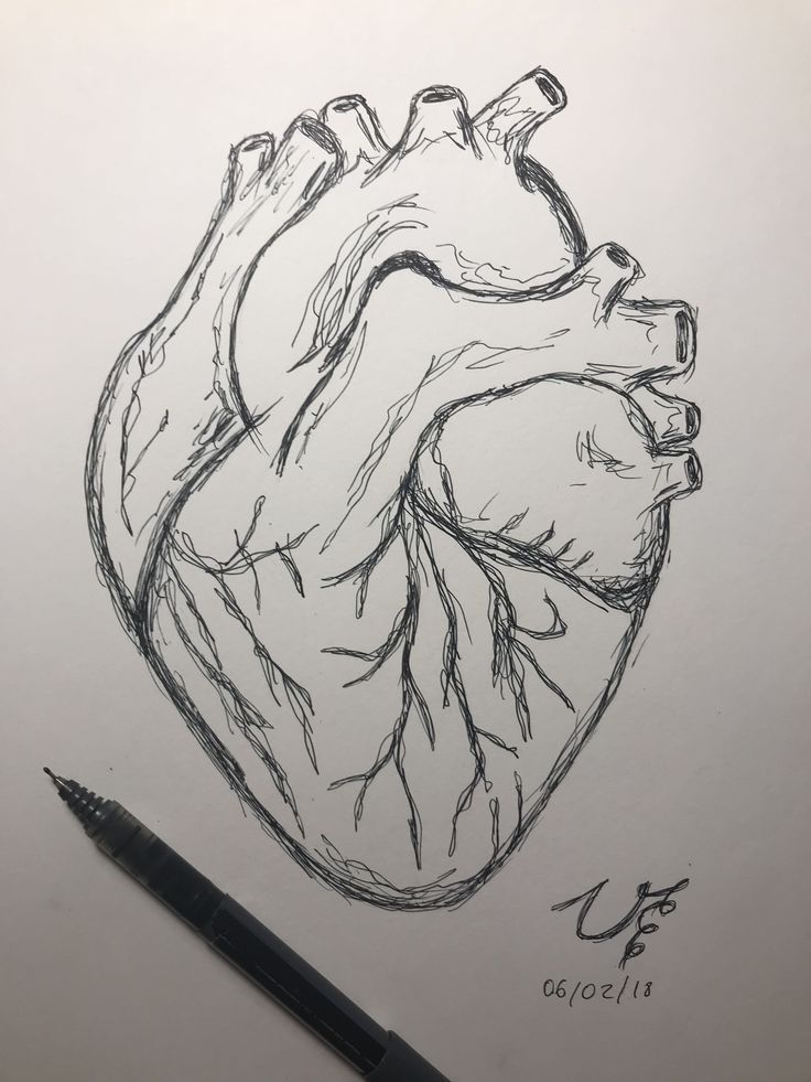 Zeichnungen Easydrawi Zeichnungen Kunst Hu Https Me Pin Autos Com Zeichnungen Easydrawi Zeichnun In 2020 Herz Zeichnen Zeichnungen Von Herzen Kunstzeichnungen