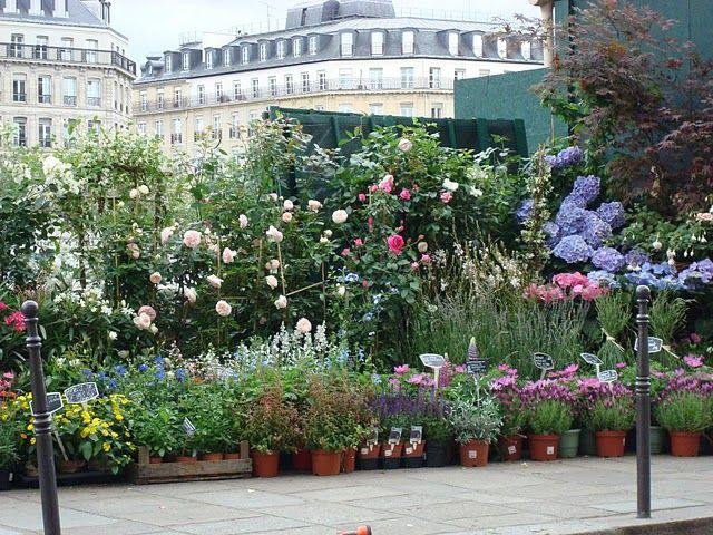 Paris weekend's flower market