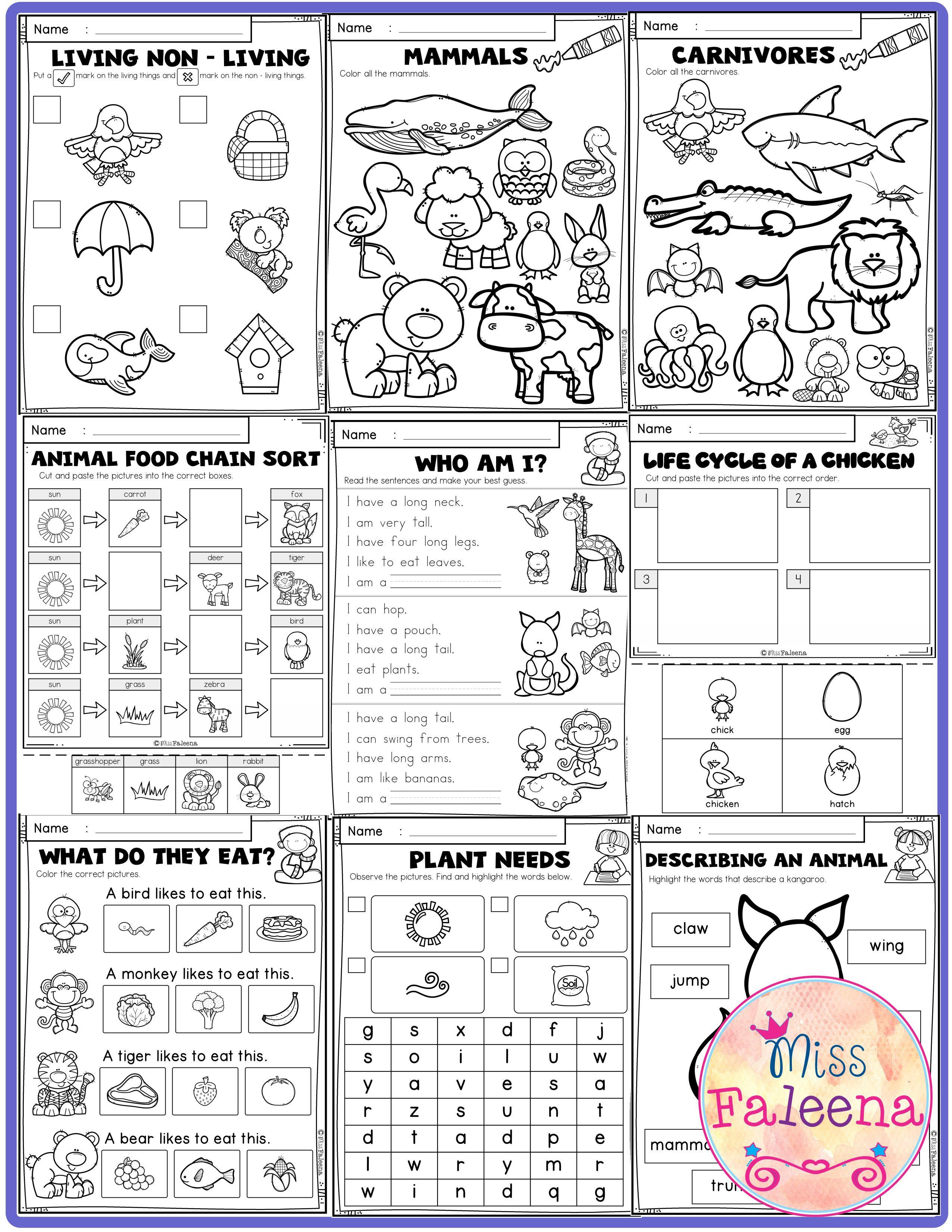 Kindergarten Science Life Science