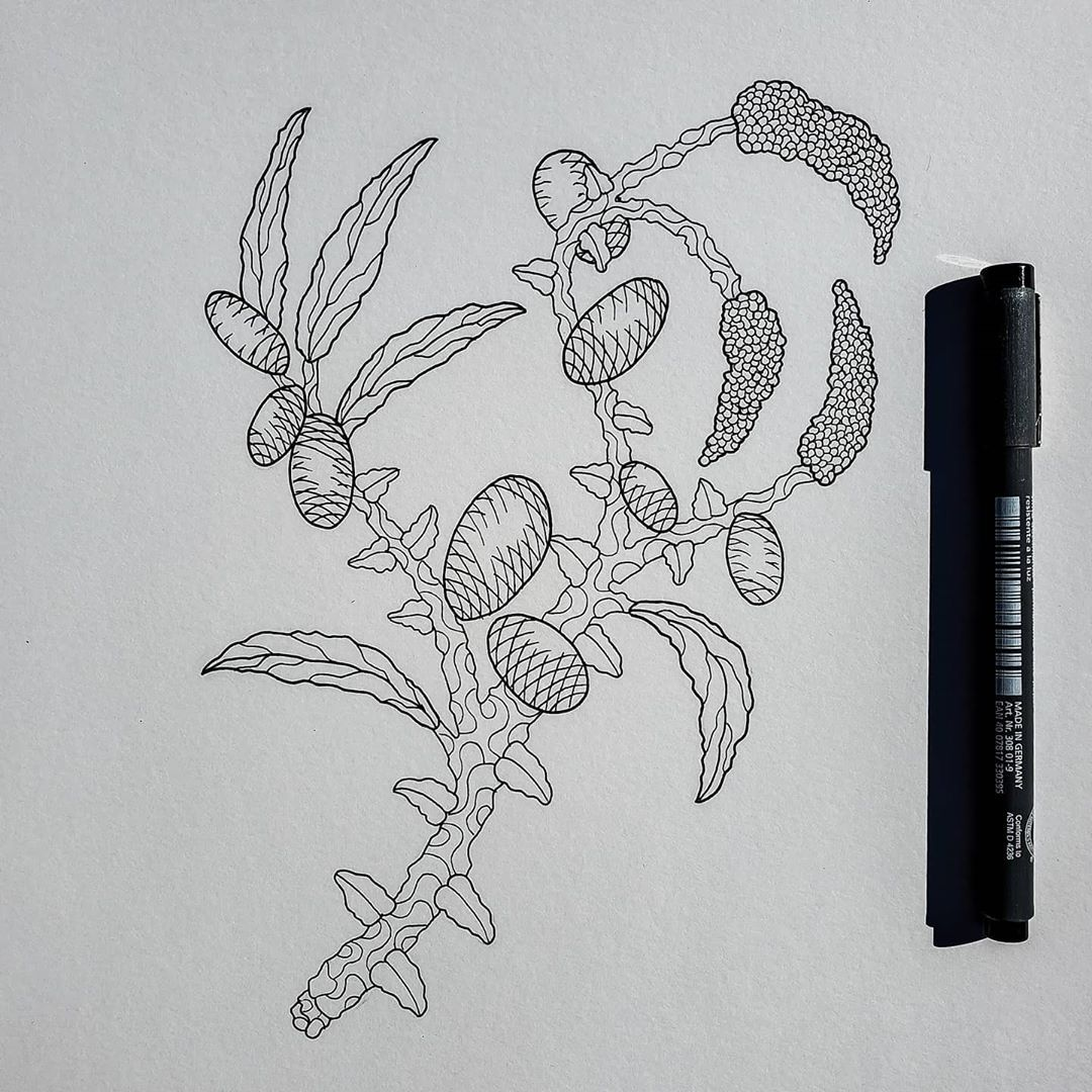 Make-believe plants & sunshine. 1000% my style ☀️ #art #arte_of_nature #artwork #artoftheday #artist #artistsoninstagram #drawing #penandink #ink #inkonpaper #inkdrawing #inkstagram #plants #fineline #instaart #artofdrawingg #sketch #sketchbook #staedtler #arts_help #art_spotlight #lavender #tattooart #blackwork #blackworknow #nawden #artfido #illustration