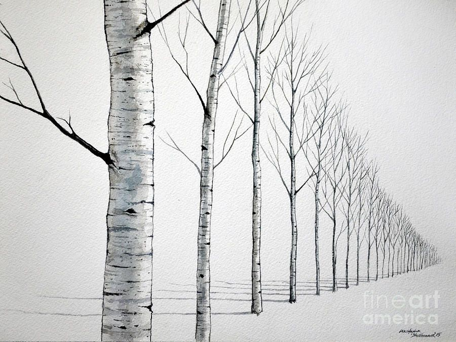 How To Paint Birch Trees In Watercolors Google Search Tree Art Birch Tree Tattoos Tree Drawings Pencil
