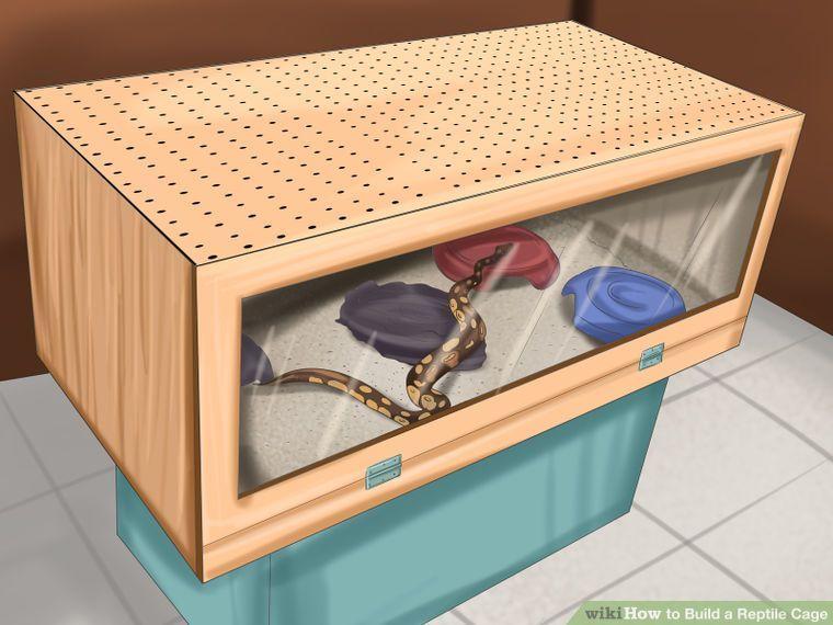 Build A Reptile Cage Zoo Deas Reptile Cage Reptile