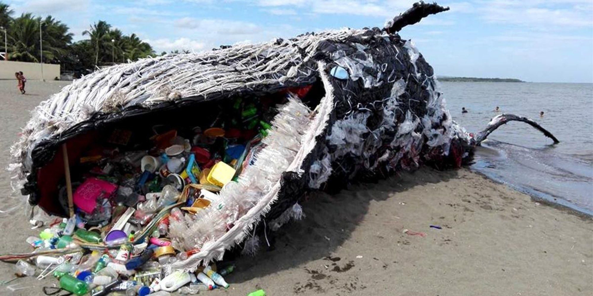 giant dead whale is haunting reminder of massive plastic pollution problem via ecowatch 15. Black Bedroom Furniture Sets. Home Design Ideas