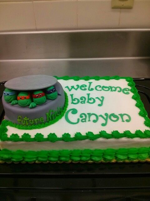 Ninja Turtle Baby Shower Cake Cake N Shake Pinterest Turtle