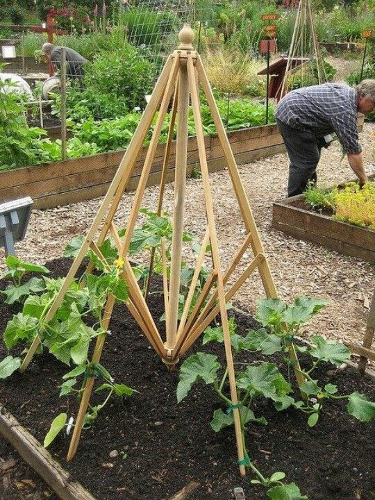Reduce Reuse Recycle Upcycle Your Old Umbrella Veggie Garden