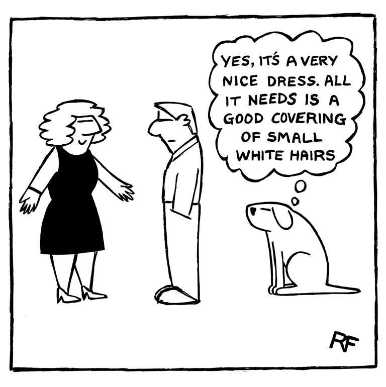 leash dog comics