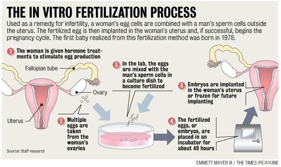 fertilitet test