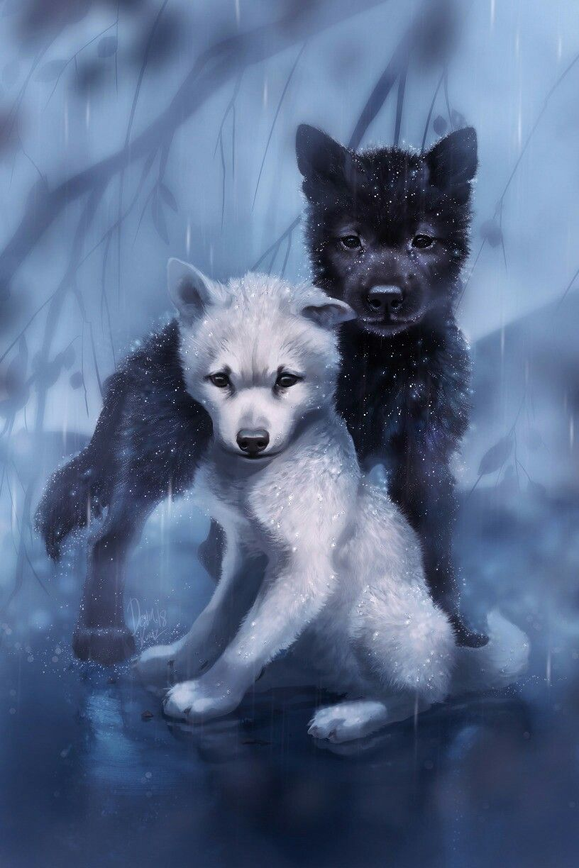 Me and my bff daniel he is the white wolf and im the black wolf why well because im protective luv ya bro