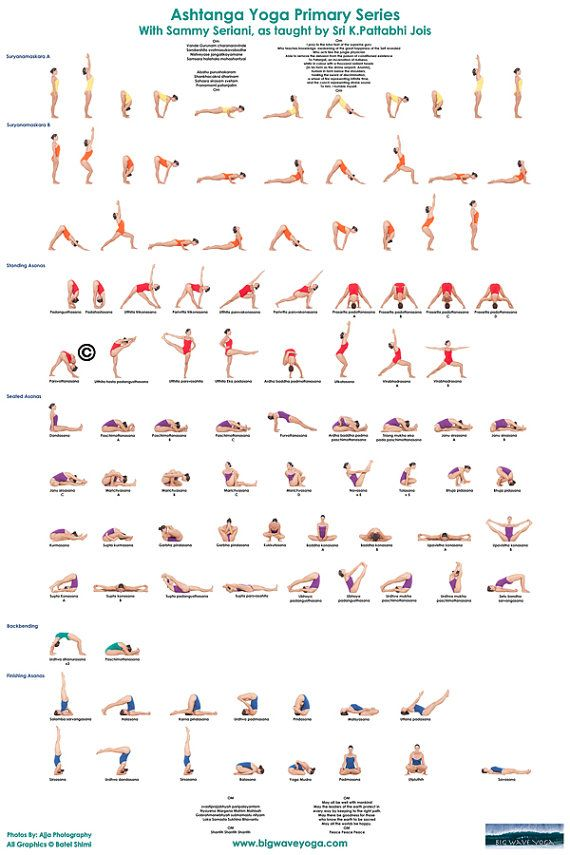 Ashtanga Yoga Primary Series Poster Ashtanga Yoga Primary Series Ashtanga Yoga Yoga Asanas